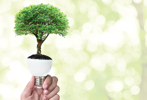 Lighting's Role in Energy Conservation Is Market Driven